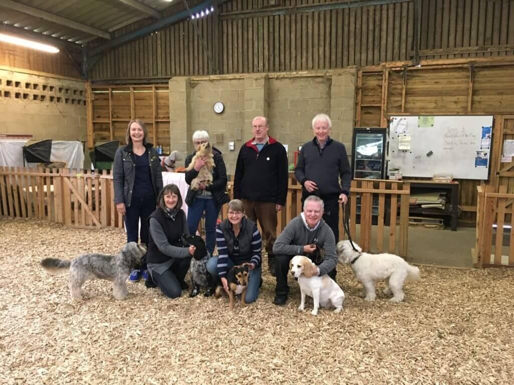 Dog Agility Foundation Training