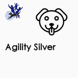 Agility Silver - Monday 10.30am