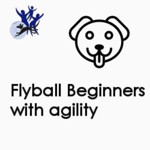Flyball Beginners with agility - Wednesday 6.00pm
